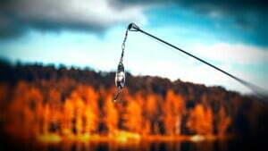 Der Fisch entscheidet, ob ihm der Köder schmeckt